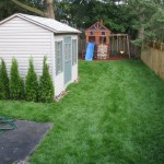New Fence And Sod